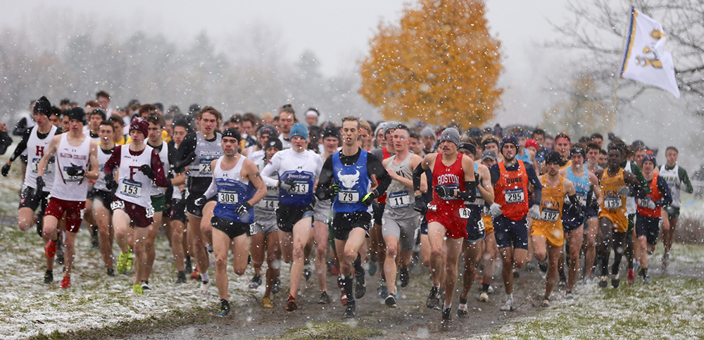 NCAA Men's XC Regionals Track & Field News